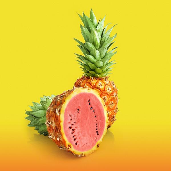 Pinemelon by GLoRin26