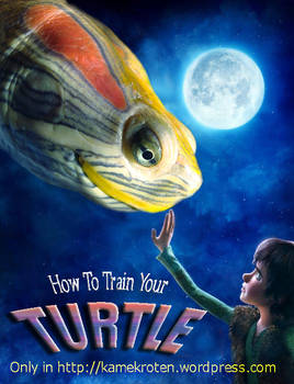 How to train your turtle