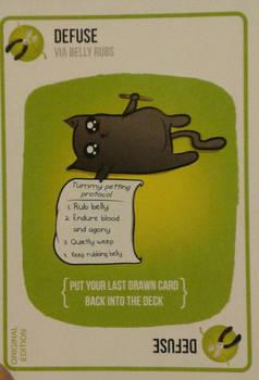 Tummy rub for cats ^v^