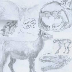 Museum Sketch Dump Dec 12 - Jan 13 by thisismyboat