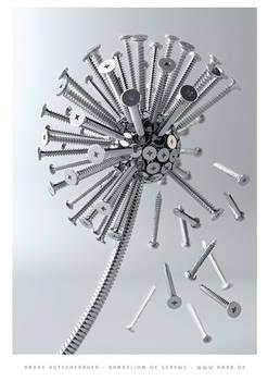 Dandelion of screws