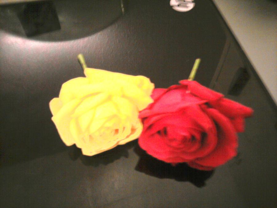 Flower, Subtle Rose Child by Arleneylass