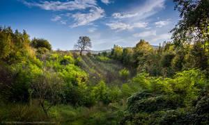 Secret Valley by TalesOfAldebaran