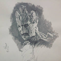 SSdS: Groot