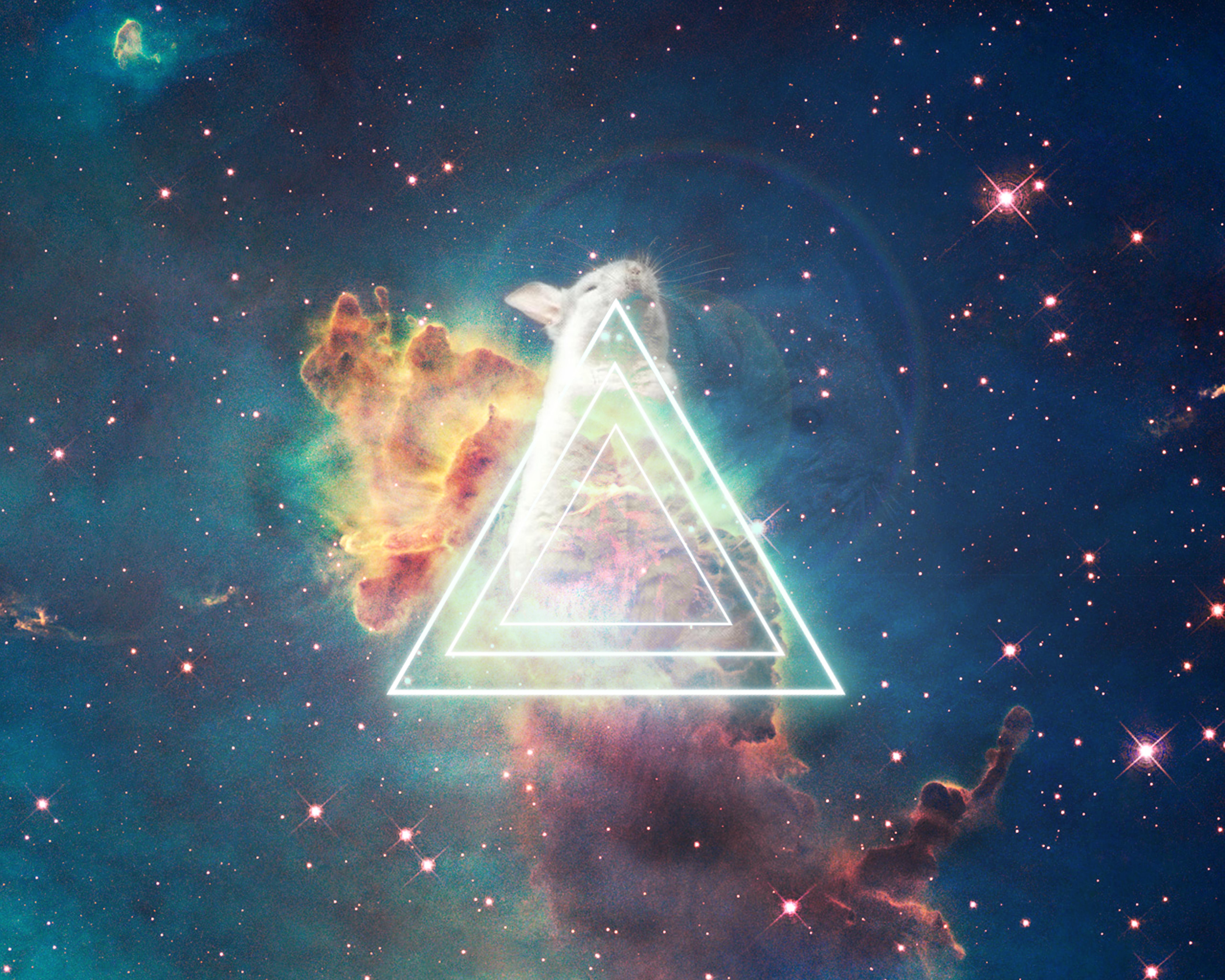 Chinchilla Nebula by iHernan on DeviantArt: ihernan.deviantart.com/art/Chinchilla-Nebula-306854325