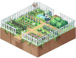 mochidori-farm