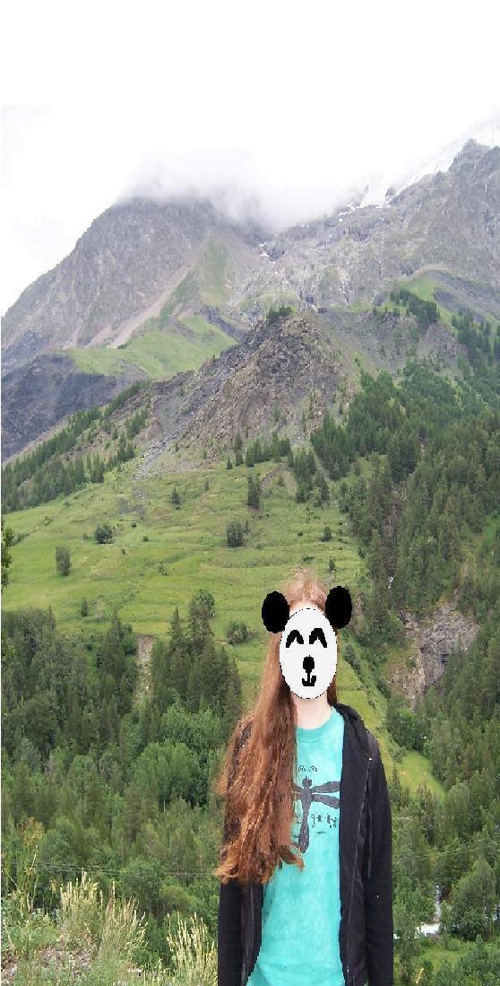 pandarune's Profile Picture