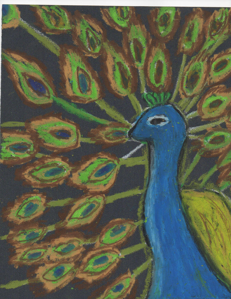 Peacock Art Project By Skydragon1217