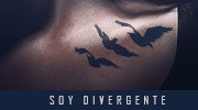 Soy Divergente [Hermana] (Confirmación) C95fd251c0eec5230149da9b0b2bd85f-d9ok9jf