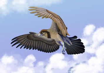 Osprey (Not actually an osprey) by Altarior