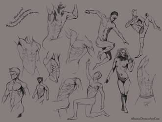Anatomy Doodles by Altarior
