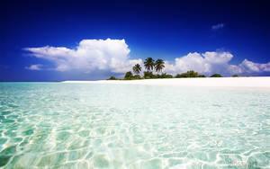 Island Paradise by nxxos