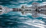 Mirror of Ice