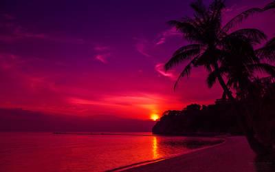 Beach Sunset Wallpaper by nxxos