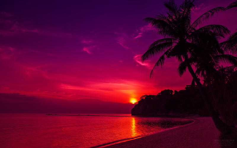 Beach Sunset Wallpaper