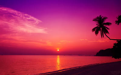 Phangan Sunset Wallpaper by nxxos