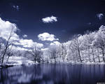 Lake of Tranquility Wallpaper