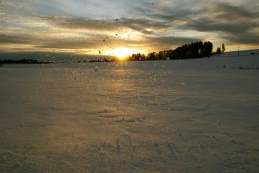 Winter's sun by MrsMay