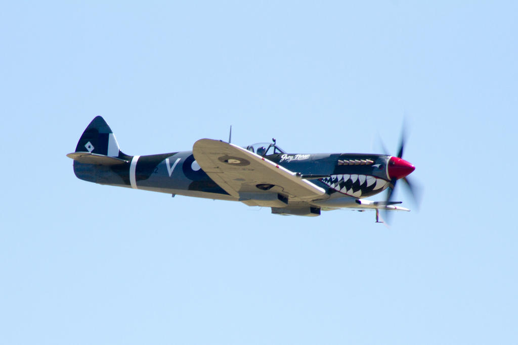 Spitfire V-RG by DogCatPie