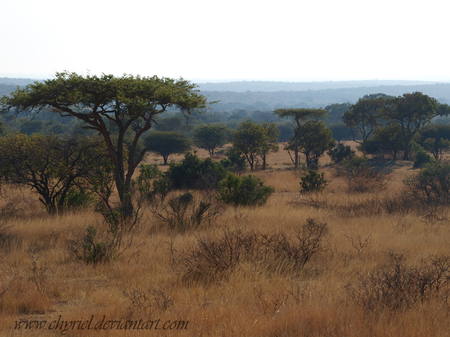 South Africa by Chyriel