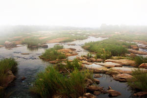 River Background by cosmopavonestock