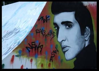 Elvis Presley by newa