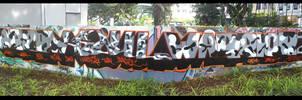 Camo Wall by newa
