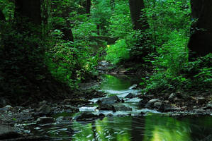 A brook 3 by veruce