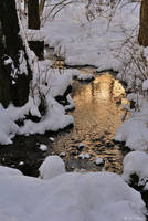 Winter 01 by veruce