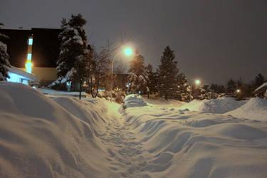 Even More More Snow ~ Wheres my car dood