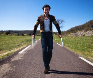 Wolverine Walking in the Day Light