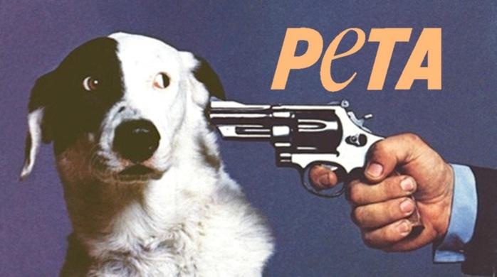 PETA in a Shellnut by TailsProwerMinecraft