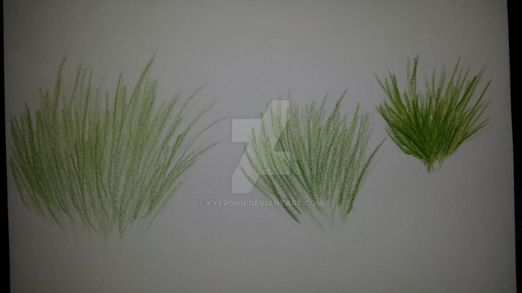 grass practice 1 by Kyeronn