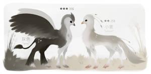 {open 1/2} Equine birdies Flatsale