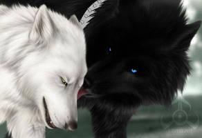 Wolf's Rain by ZutaraXWolf
