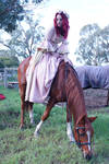 renaissance horse ride stock 1