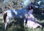 renaissance horse ride stock 3