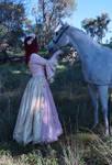 Renaissance horse ride 4