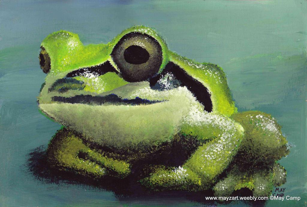 Frog by Mayzart