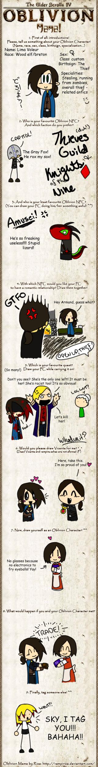 Oblivion meme ohoho by explodingcrayon93