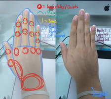 Tutorial: Guidelines for hands by SakoiyaChan