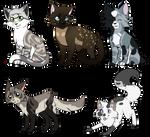 New Kitties~