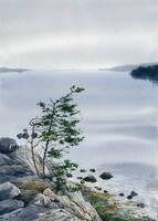 Karelia by Filat