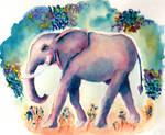 Elephant Flowers