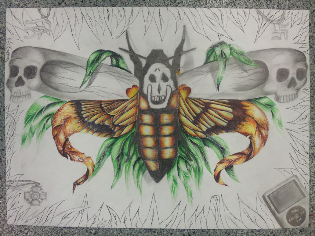 Death head moth final piece by jainism1492