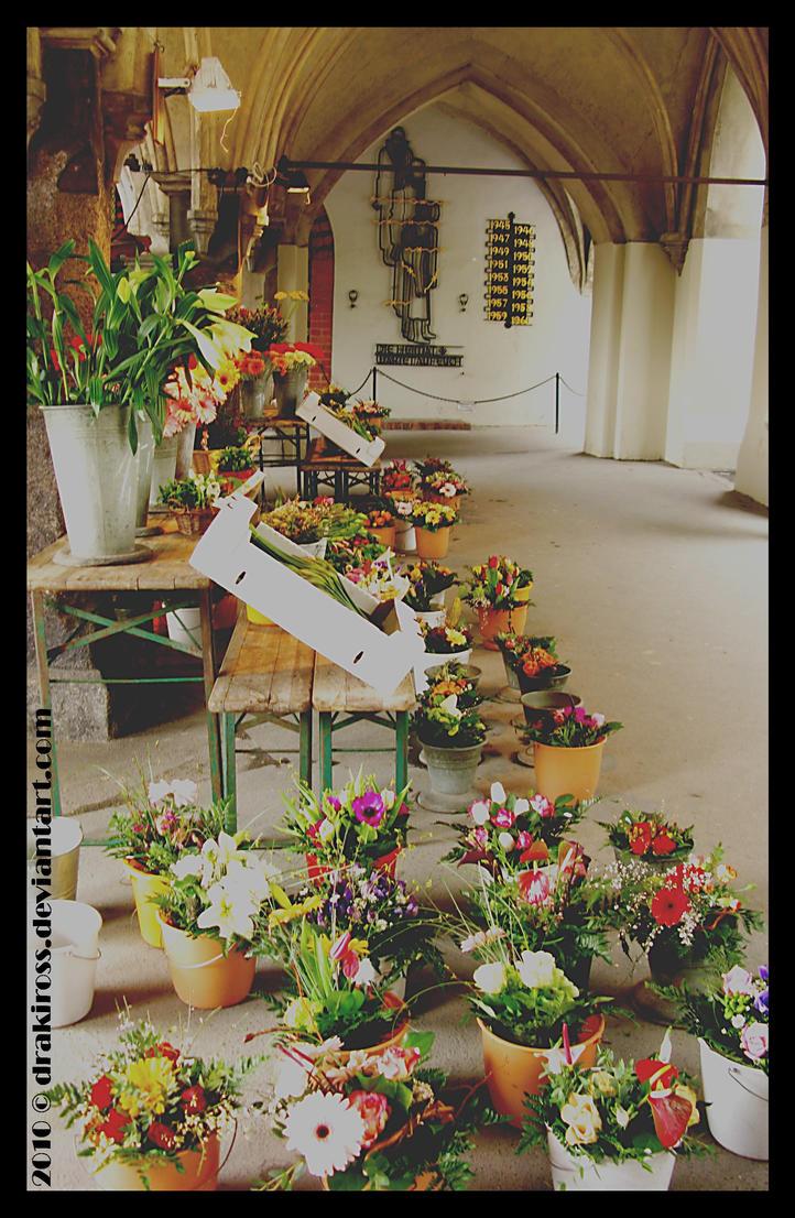 The Florist by drakiross
