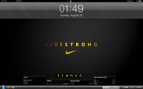 August 2010 Desktop