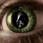 in the eye