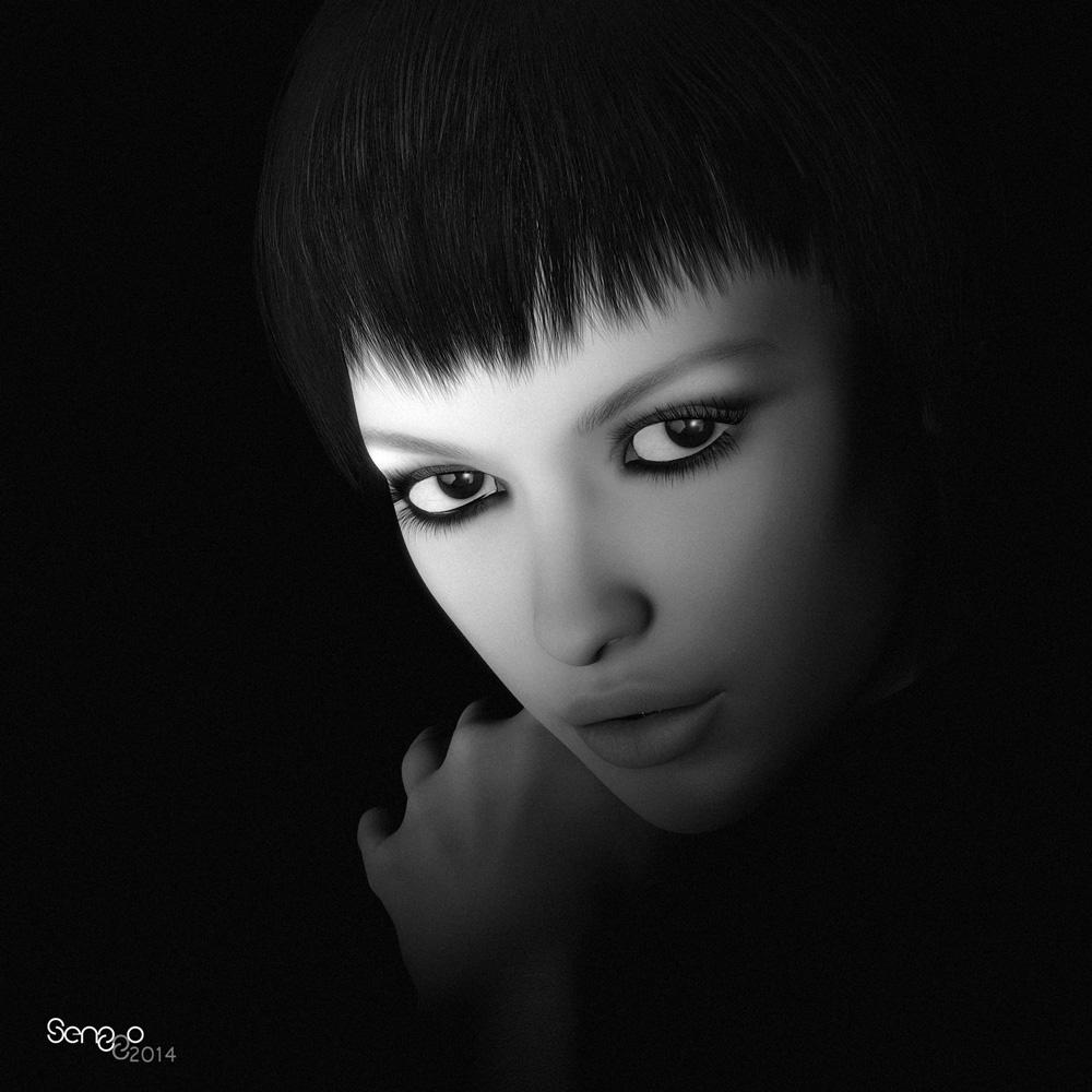 Noir 3 by SenZzo-art