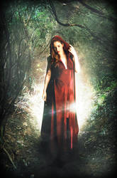 Red Little Riding Hood by RikenProductions